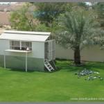 Dovecote in Dubai