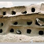 Dovecote in Israel