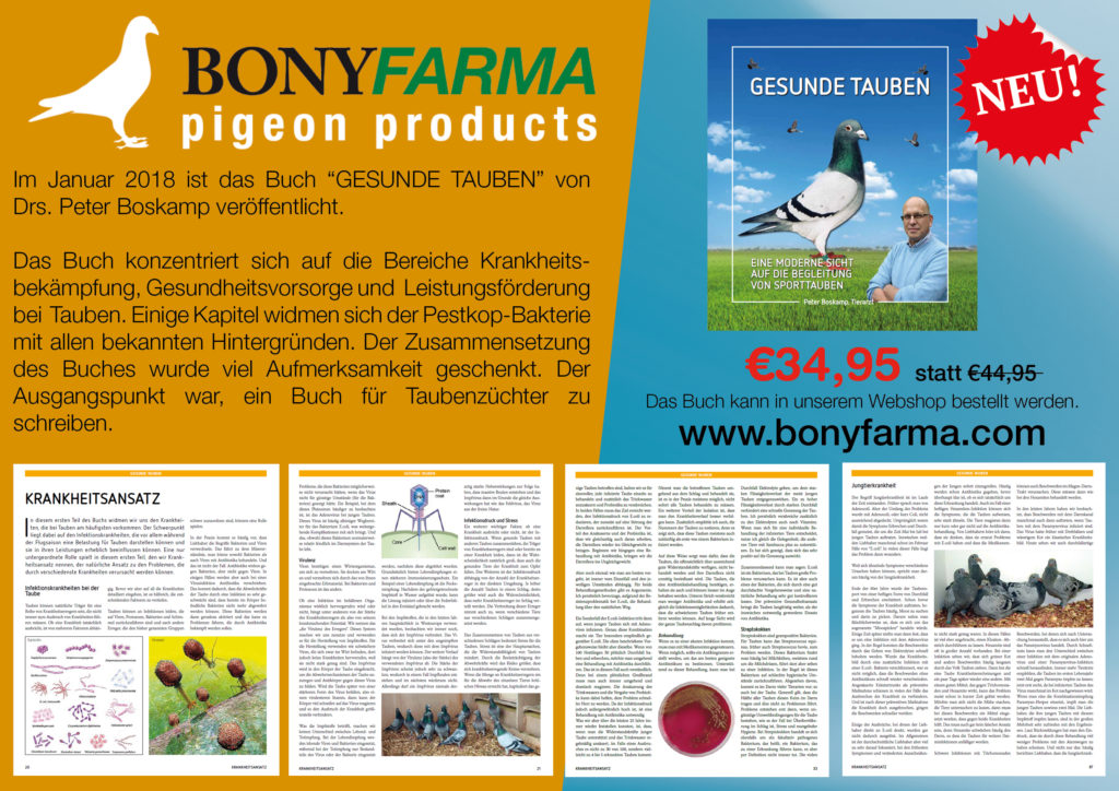 Boskamp boek Gezonde duiven