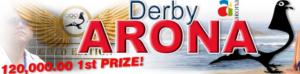 Logo_DerbyArona