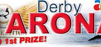 Het Team Soepboer wint de finale van de Arona Tenerife 2020 Derby