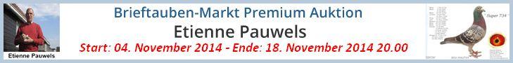 PREMIUM AUKTION – Etienne Pauwels