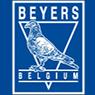 Beyers 饲养鸽子市场图案复制