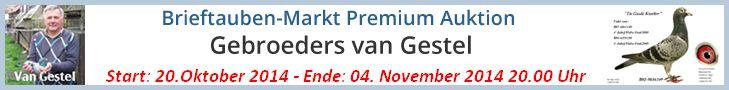 PREMIUM AUKTION - Gebr. van Gestel