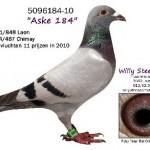Aske 184 5096184-10
