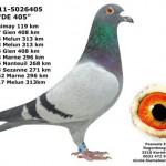 BE-11-5026405 DE 405