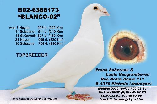 Blanco-02