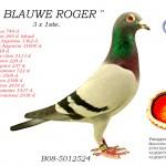 Blauwe Roger B08-5012524