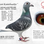 Bont Kannibaaltje B08-5012597