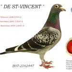 DE St-Vincent B07-2162447