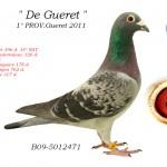 De Gueret B09-5012471