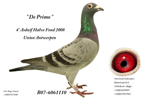 De Primo B07-6061110