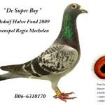 德超级男孩 B06 6310170