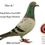 Den As B08-6131649