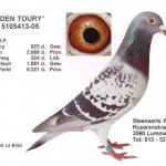Den Toury 5105413-05