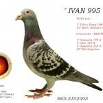 Ivan 995 B05-5102995