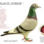 Klaus Junior B05-5216897
