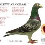 Kleine Kannibaal B04-2198281