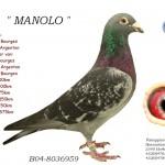 Manolo B04-8036959