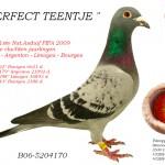 Perfect Teentje B06-5204170