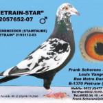 PietrainStar
