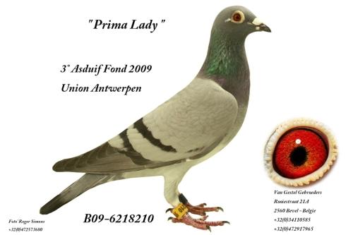 Prima Lady B09-6218210