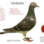 Sonara B05-5103044