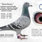Staartmans B08-5012568