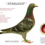 Starlight B05-5103003