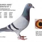 Super Aske 5045732-07