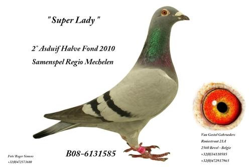 Super Lady B08-6131585