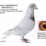 Vale Geerinckx 6354183-02