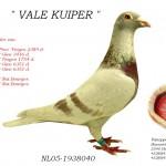 Vale Kuiper NL05-1938040