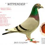 Witpender B05-5102994