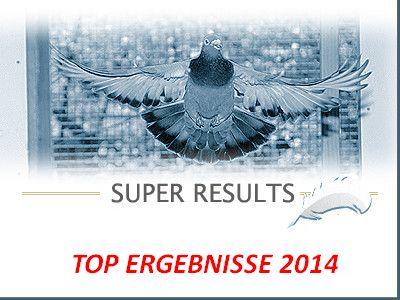 Super Ergebnis für Willy Steenaerts, Lummen !