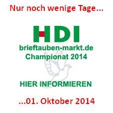 HDI brieftauben-markt Championat 2014 - Ihre Bewerbung - nur noch wenige Tage...