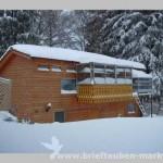cote in de sneeuw