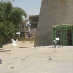 Duiventil in Bagdad