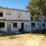 Pigeon-House in Spain