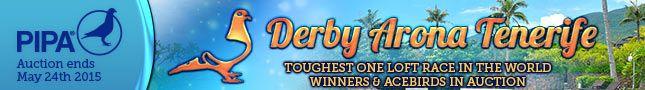 AUKTION - Derby Arona auf Teneriffa...
