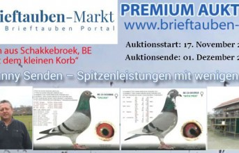 PREMIUM Auktion Danny Senden, Schakkebroek...