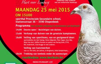 Pigeon happening Sint-Gerardus am 25. Mai 2015...