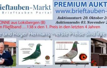 PREMIUM-Auktion HERMANS-BONNE, Loksbergen...