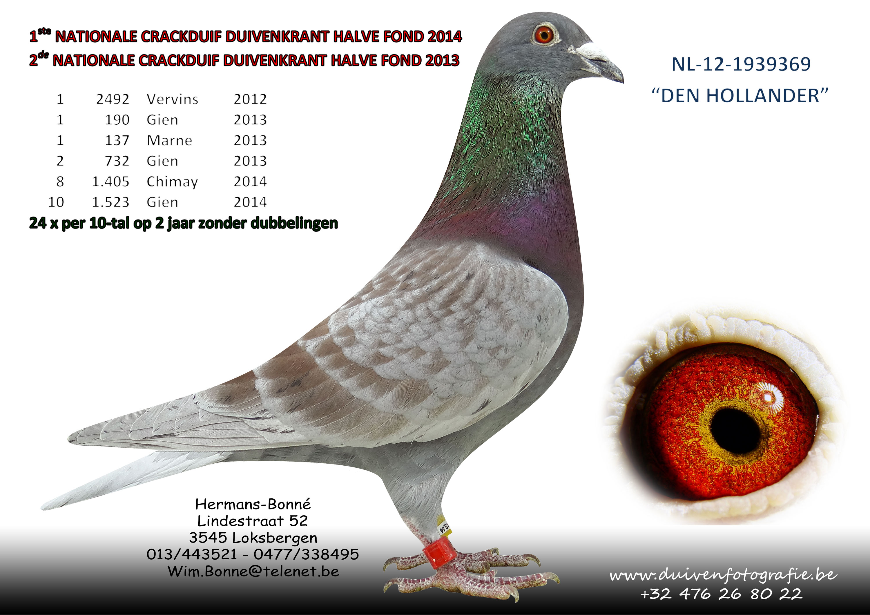 hermans bone NL-12-1939369-den-Hollander-tekst-mei-2015
