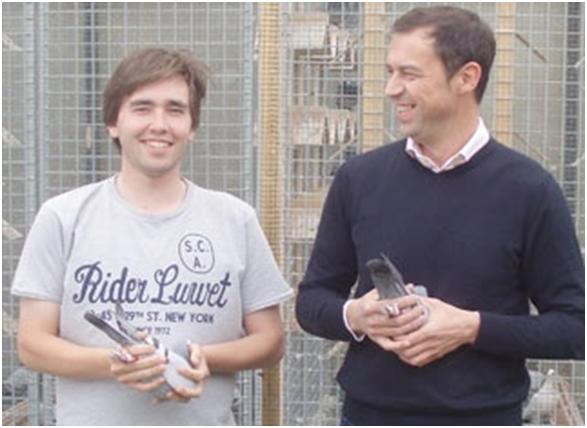 FLANDERS COLLECTION - Eine neue Macht im internationalen Taubensport !