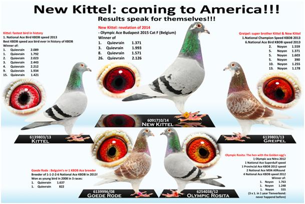 6091710/14 New Kittel