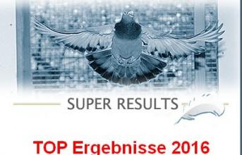 TOP Ergebnisse 2016...