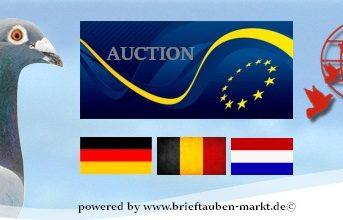 Auktion EUROPEAN SUPERSTARS 2016 - Ankündigung...