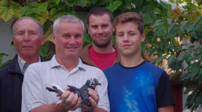团队乌尔里希 -  8.协会与冠军一岁鸽在2017年...