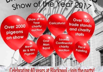 45th annual BHW Show of the Year at Blackpool...